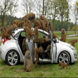 Аварийное вскрытие Авто